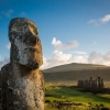 The Traveling Moai