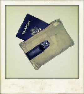 The passport is a must, and carrying it and money in a hidden pouch is smart.