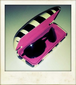 I carry my shades in a protective hard case