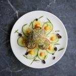 AlmaZen's artful cuisine